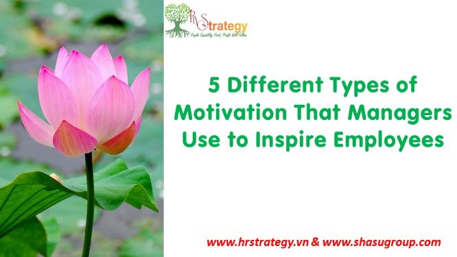 5 Different Types of Motivation That Managers Use to Inspire Employees