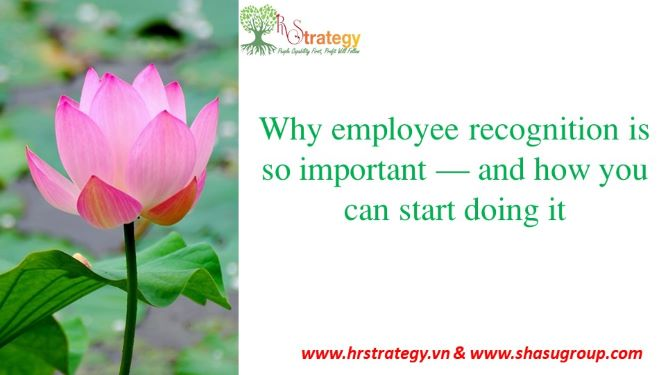 Why employee recognition is so important – and how you can start doing it