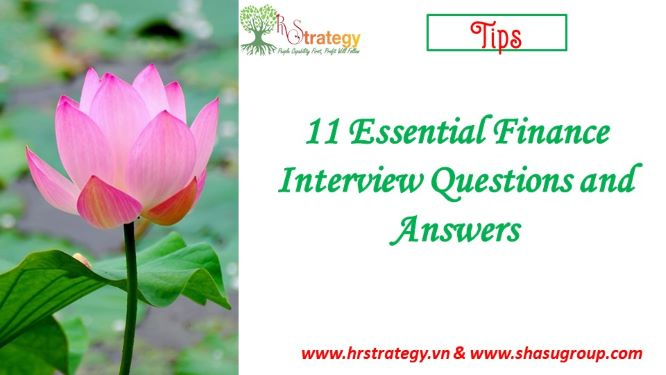 11 Essential Finance Interview Questions and Answers