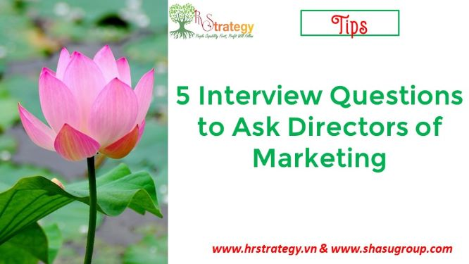 5 Interview Questions to Ask Directors of Marketing