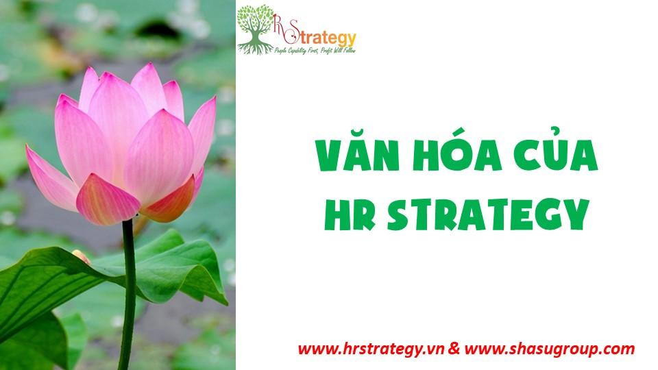 Mời Bạn Ghé Thăm Nhà HR Strategy & Cảm Nhận Văn Hóa Công Ty Chúng Tôi