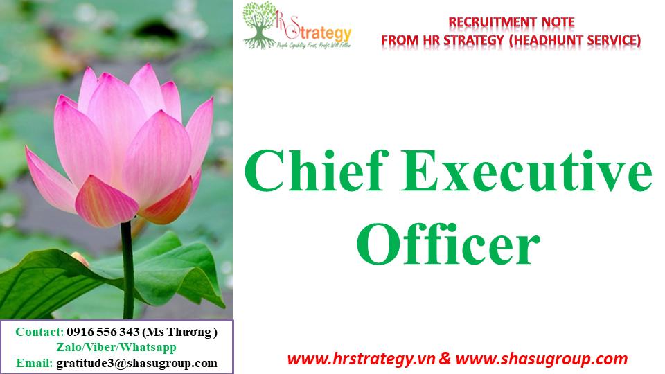 HR Strategy (Headhunter)'s Client