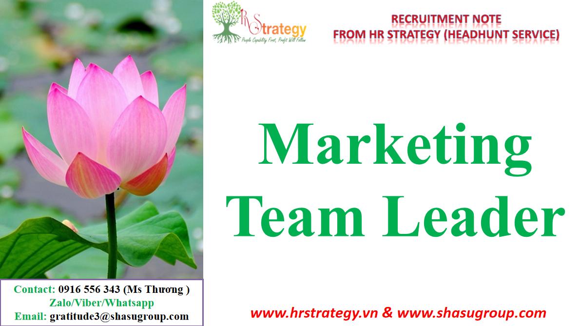 Marketing Team Leader